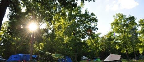 Camping Sites et Paysages Au Bois Joli in Andryes ist ein Charme Camping mit Schwimmbad in Yonne, Burgund am Wald.